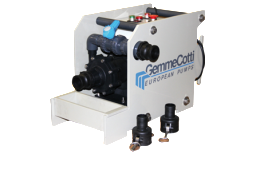 GEMMECOTTI Portable Pumps: H-IBC